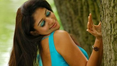 Photo of Nayantara's smoldering saree avatar takes the internet by storm